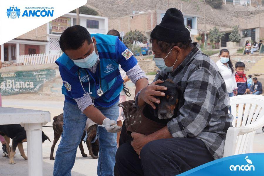MÁS DE 1200 ANIMALITOS HAN SIDO ATENDIDOS GRACIAS A LA CAMPAÑA VETERINARIA MUNICIPAL DESCENTRALIZADA
